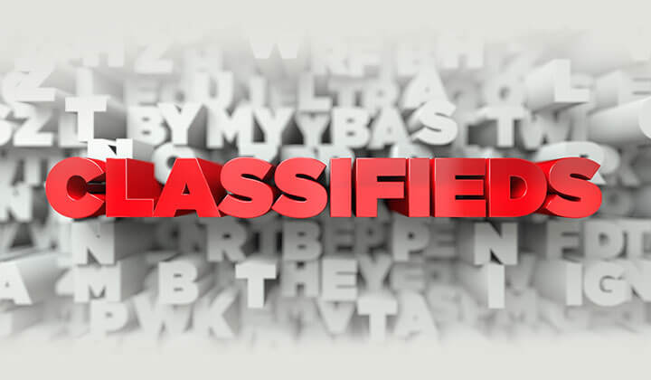 Classified Websites