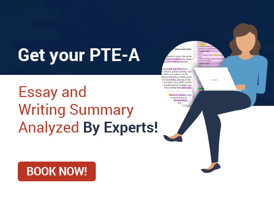 PTE Writing Correction Services